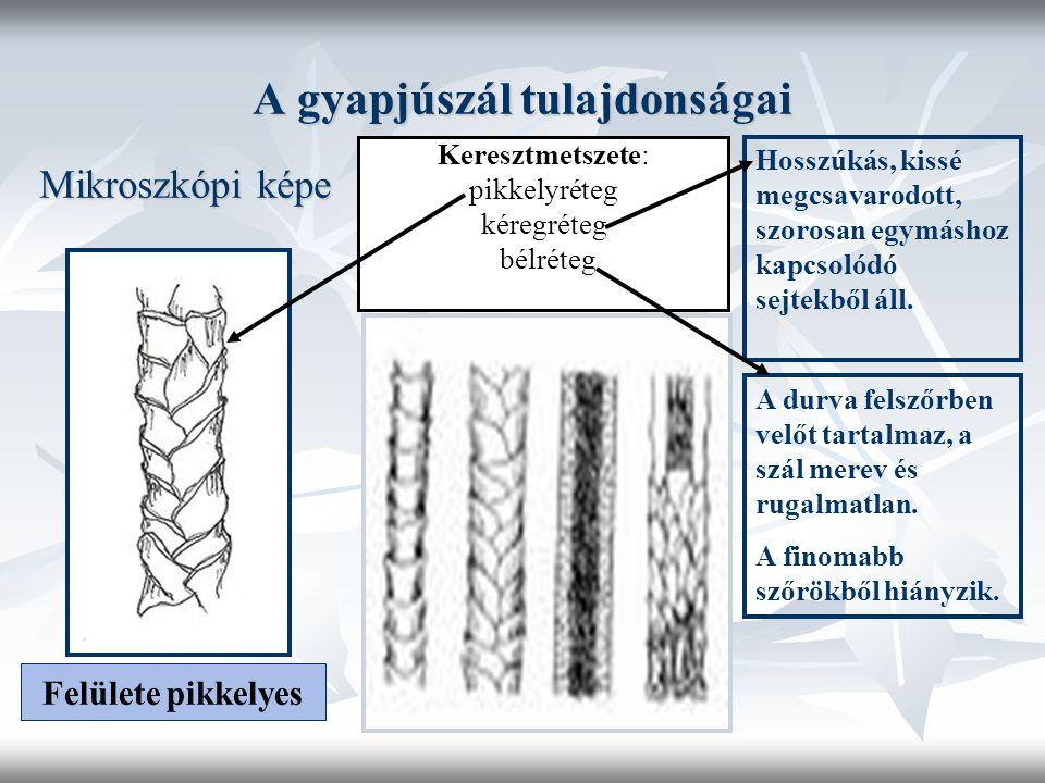 A gyapjúszál tulajdonságai Mikroszkópi képe Felülete pikkelyes Keresztmetszete: pikkelyréteg kéregréteg bélréteg Hosszúkás, kissé megcsavarodott, szorosan egymáshoz kapcsolódó sejtekből áll.