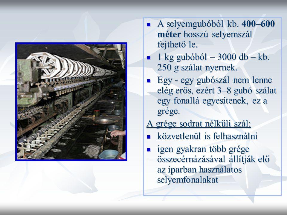  A selyemgubóból kb.400–600 méter hosszú selyemszál fejthető le.