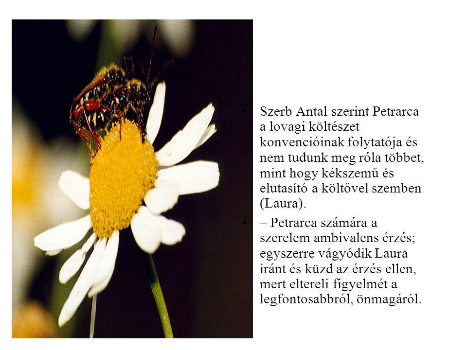 •Szerb Antal szerint Petrarca a lovagi költészet konvencióinak folytatója és nem tudunk meg róla többet, mint hogy kékszemű és elutasító a költővel sz