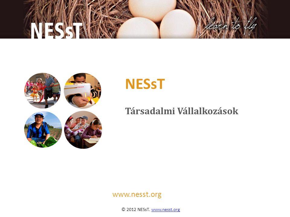 © 2012 NESsT. www.nesst.orgw w.nesst.org www.nesst.org NESsT Társadalmi Vállalkozások