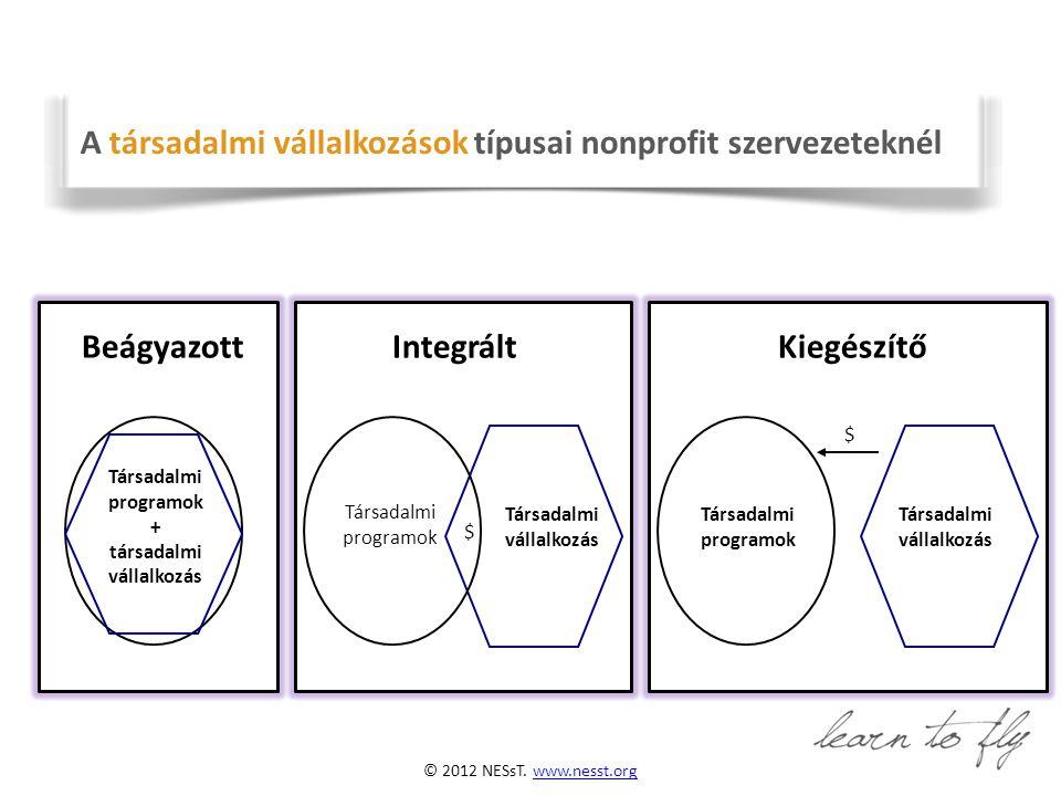 © 2012 NESsT. www.nesst.orgw w.nesst.org BeágyazottIntegráltKiegészítő Társadalmi programok + társadalmi vállalkozás Társadalmi programok Társadalmi v