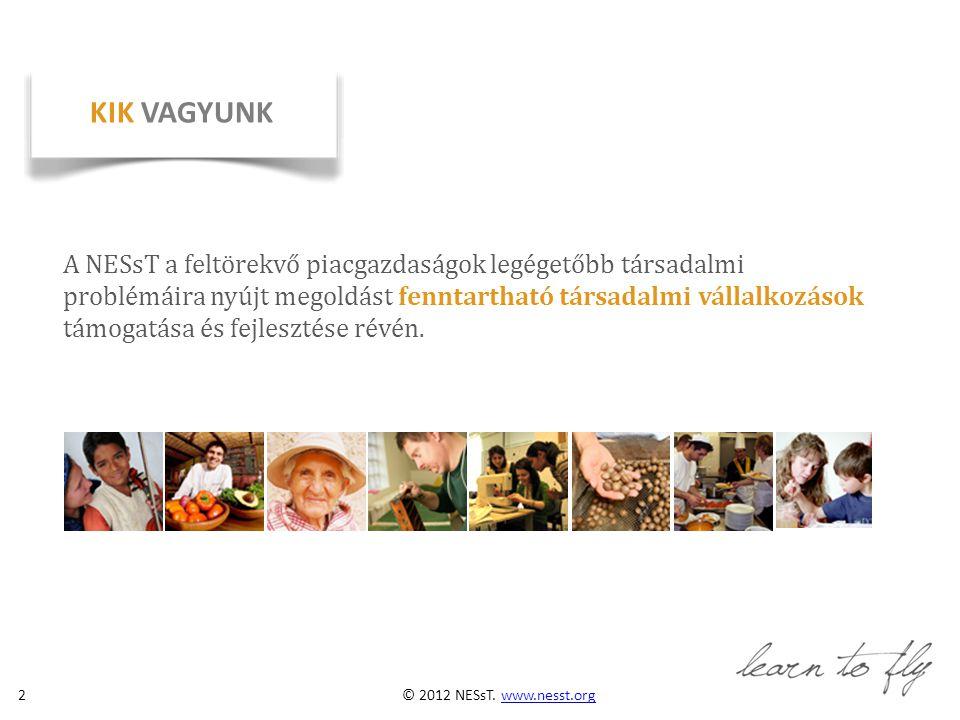 © 2012 NESsT.