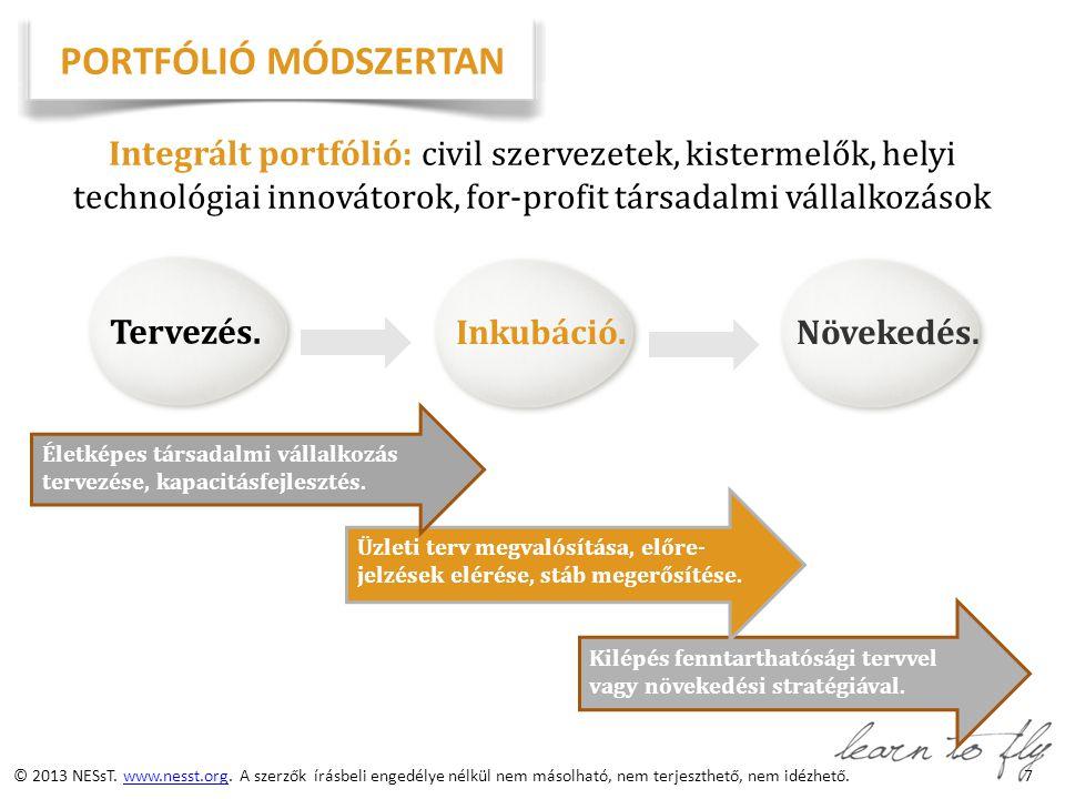 8 NESsT TÁMOGATÁSI FILOZÓFIA Portfólió Pénzügyi befektetés A szervezet/vállalkozás igényeihez igazodó finanszírozási csomag Teljesítmény- menedzsment Vállalkozástervezési támogatás Szervezetfejlesztési támogatás NESsT Készségfejlesztés, szakmai támogatás Szoros, személyre szabott szakmai támogatás a NESsT és stratégiai partnerei részéről Üzleti Tanácsadói Hálózat NESsTER – nemzetközi önkéntes & gyakornoki program Hozzáférés a NESsT befektetői köréhez Vállalkozás-specifikus pénzügyi támogatás, hitel Tapasztalat megosztás, know-how átadás a portfólió tagok között © 2012 NESsT.