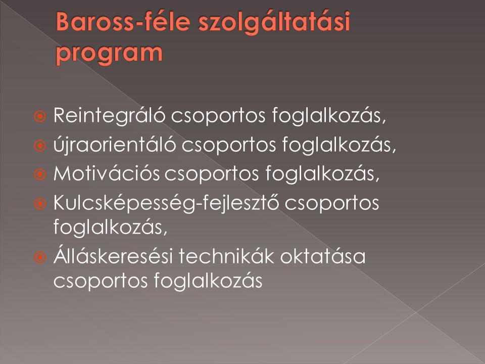  Reintegráló csoportos foglalkozás,  újraorientáló csoportos foglalkozás,  Motivációs csoportos foglalkozás,  Kulcsképesség-fejlesztő csoportos foglalkozás,  Álláskeresési technikák oktatása csoportos foglalkozás
