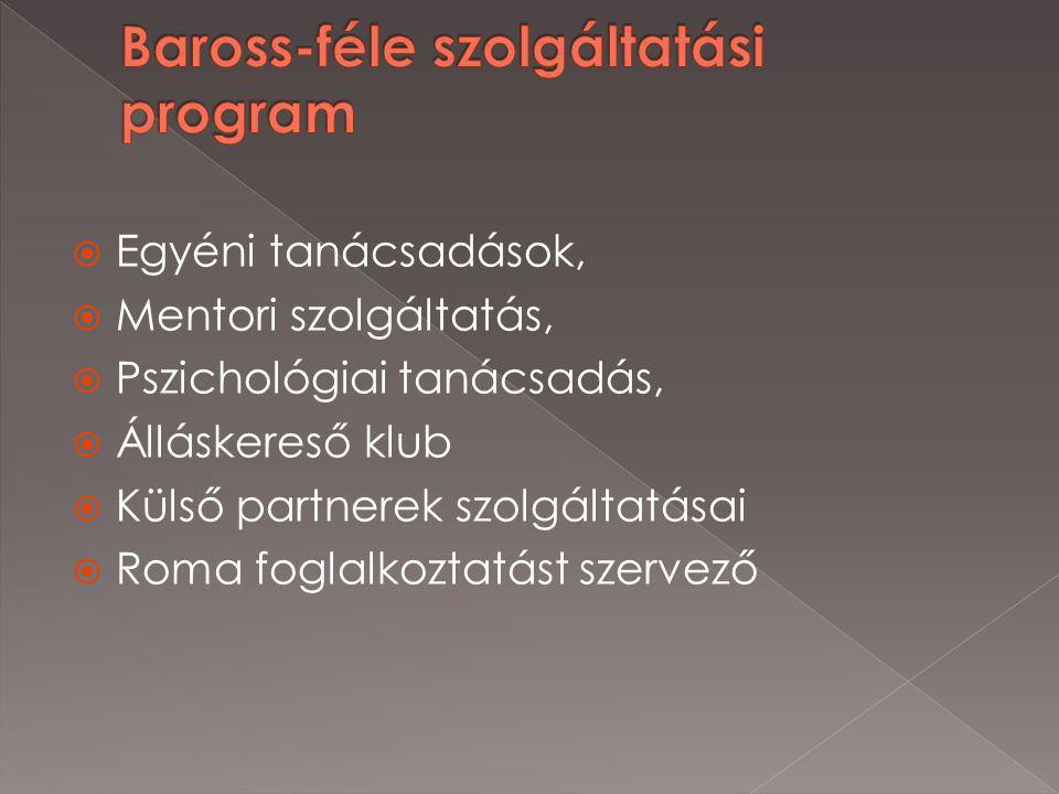  Egyéni tanácsadások,  Mentori szolgáltatás,  Pszichológiai tanácsadás,  Álláskereső klub  Külső partnerek szolgáltatásai  Roma foglalkoztatást szervező