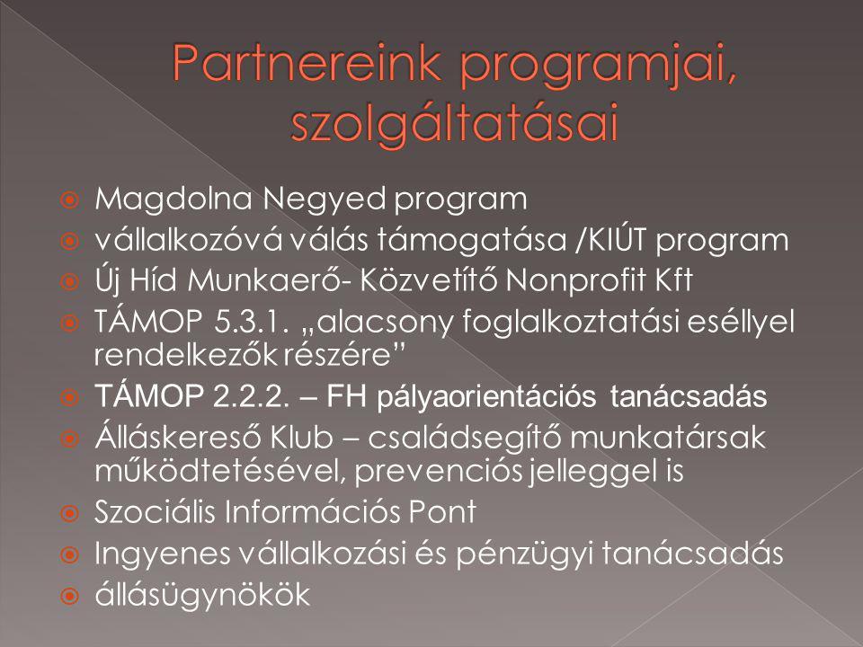  Magdolna Negyed program  vállalkozóvá válás támogatása /KIÚT program  Új Híd Munkaerő- Közvetítő Nonprofit Kft  TÁMOP 5.3.1.