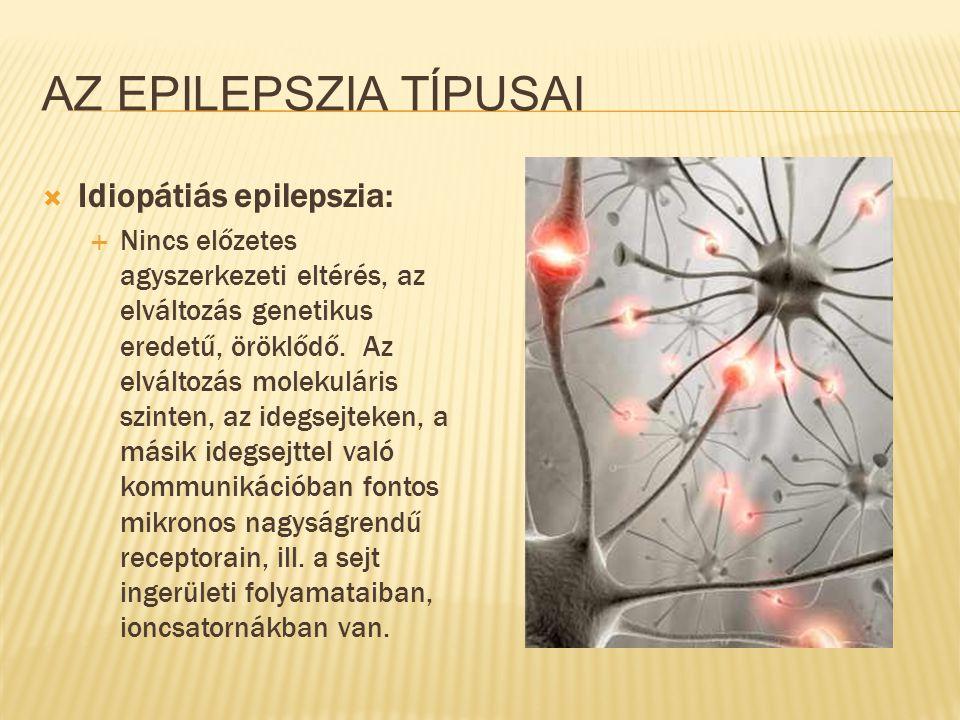 AZ EPILEPSZIA TÍPUSAI  Idiopátiás epilepszia:  Nincs előzetes agyszerkezeti eltérés, az elváltozás genetikus eredetű, öröklődő. Az elváltozás moleku