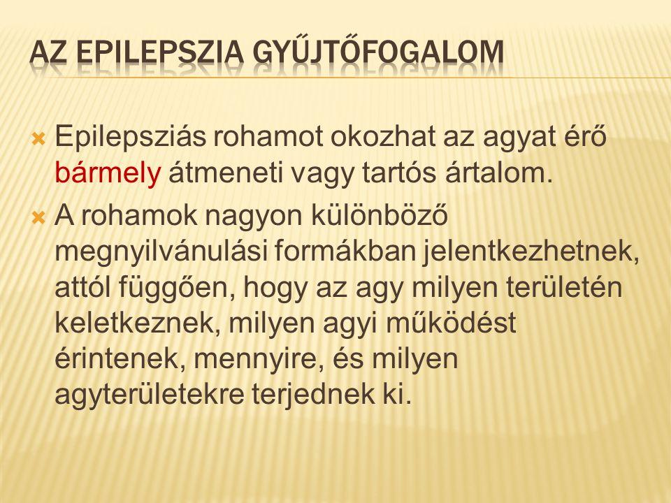  Epilepsziás rohamot okozhat az agyat érő bármely átmeneti vagy tartós ártalom.  A rohamok nagyon különböző megnyilvánulási formákban jelentkezhetne
