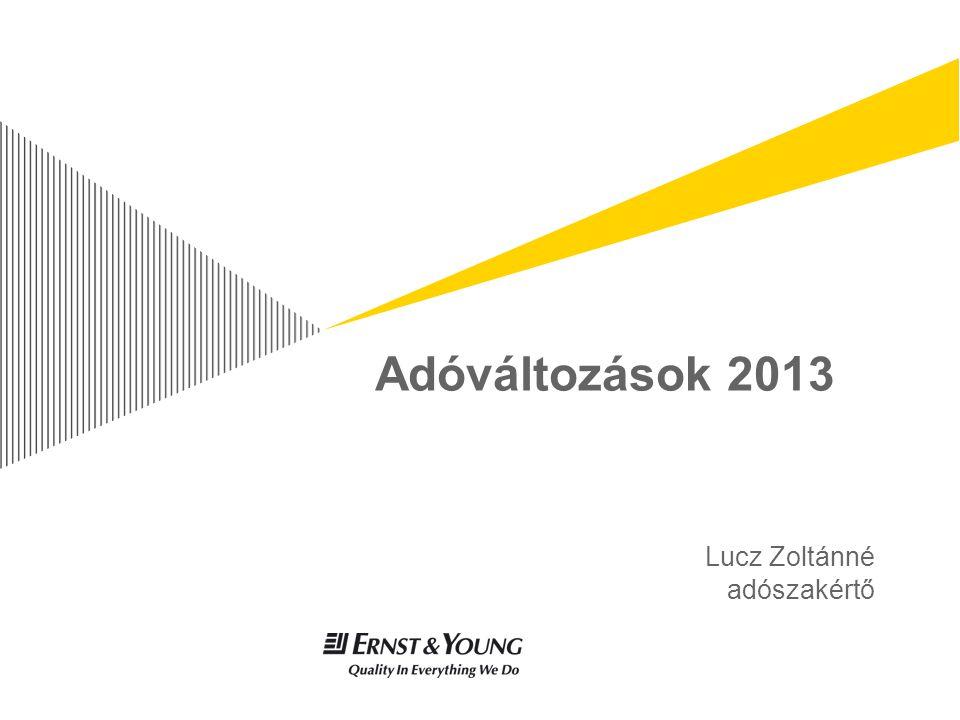 Adóváltozások 2013 Lucz Zoltánné adószakértő