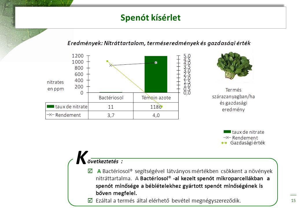 Spenót kísérlet 15 K övetkeztetés :  A Bactériosol® segítségével látványos mértékben csökkent a növények nitráttartalma. A Bactériosol® -al kezelt sp