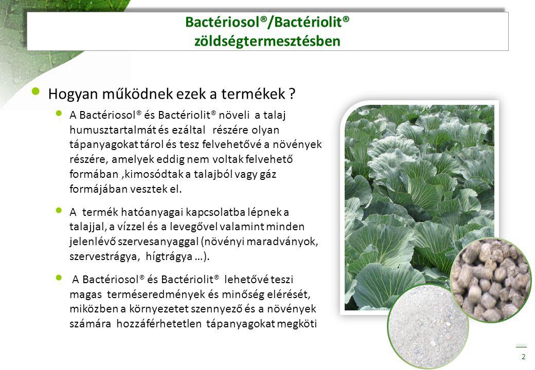Bactériosol®/Bactériolit® zöldségtermesztésben • Hogyan működnek ezek a termékek ? • A Bactériosol® és Bactériolit® növeli a talaj humusztartalmát és