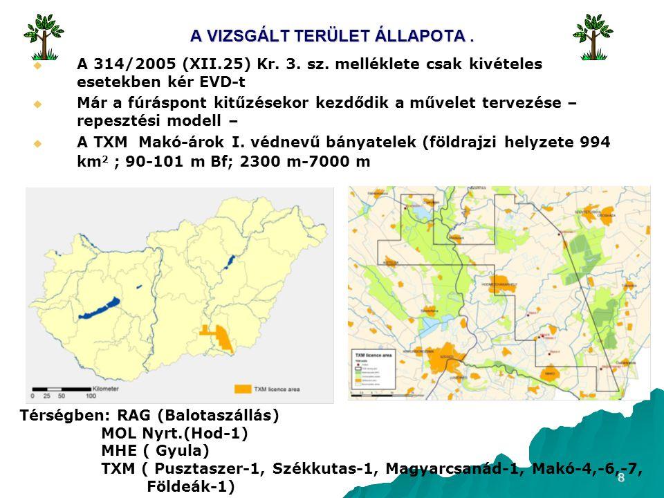 8 A VIZSGÁLT TERÜLET ÁLLAPOTA.  A 314/2005 (XII.25) Kr.