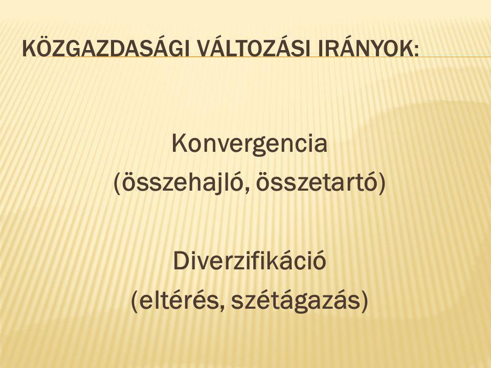 KÖZGAZDASÁGI VÁLTOZÁSI IRÁNYOK: Konvergencia (összehajló, összetartó) Diverzifikáció (eltérés, szétágazás)