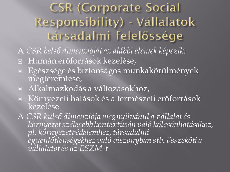 A CSR belső dimenzióját az alábbi elemek képezik:  Humán erőforrások kezelése,  Egészsége és biztonságos munkakörülmények megteremtése,  Alkalmazkodás a változásokhoz,  Környezeti hatások és a természeti erőforrások kezelése A CSR külső dimenziója megnyilvánul a vállalat és környezet szélesebb kontextusán való kölcsönhatásához, pl.
