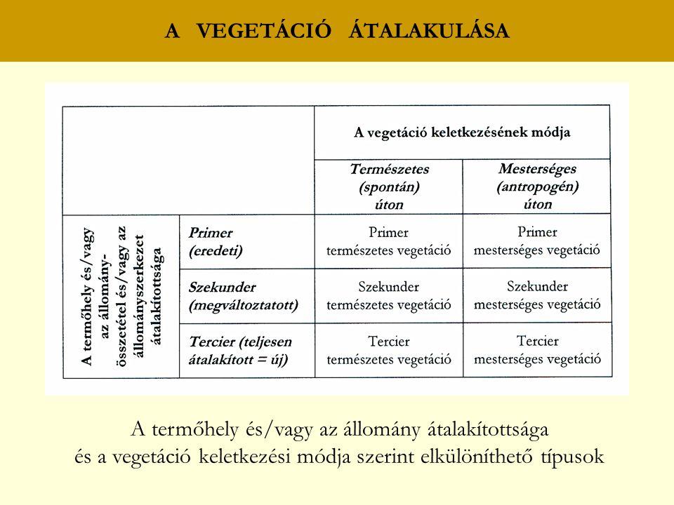 A VEGETÁCIÓ ÁTALAKULÁSA A termőhely és/vagy az állomány átalakítottsága és a vegetáció keletkezési módja szerint elkülöníthető típusok