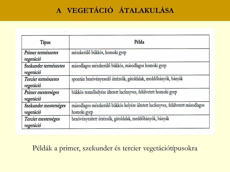 A VEGETÁCIÓ ÁTALAKULÁSA Példák a primer, szekunder és tercier vegetációtípusokra