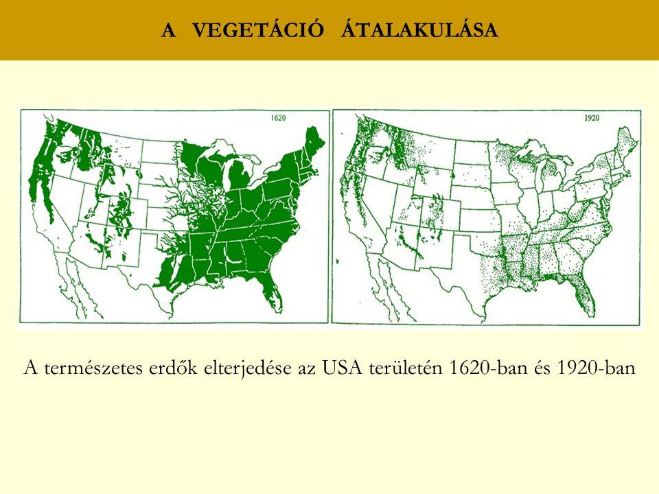 A VEGETÁCIÓ ÁTALAKULÁSA A természetes erdők elterjedése az USA területén 1620-ban és 1920-ban