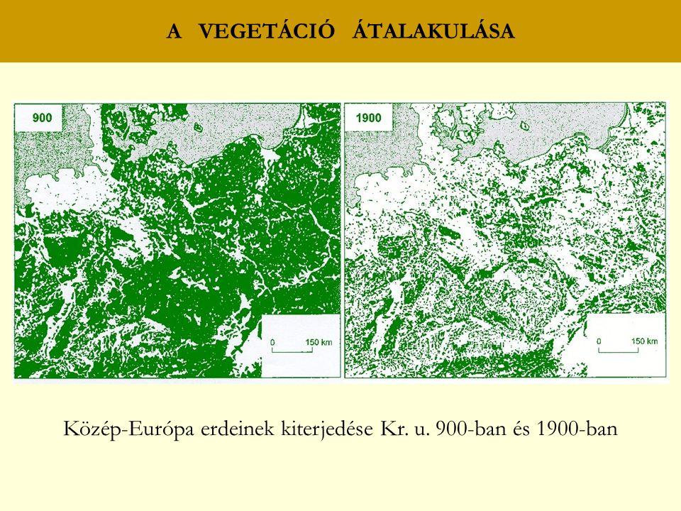 A VEGETÁCIÓ ÁTALAKULÁSA Közép-Európa erdeinek kiterjedése Kr. u. 900-ban és 1900-ban