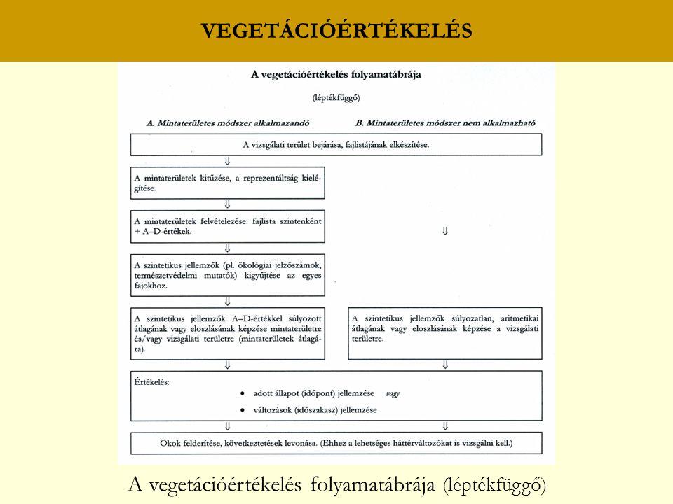 VEGETÁCIÓÉRTÉKELÉS A vegetációértékelés folyamatábrája (léptékfüggő)
