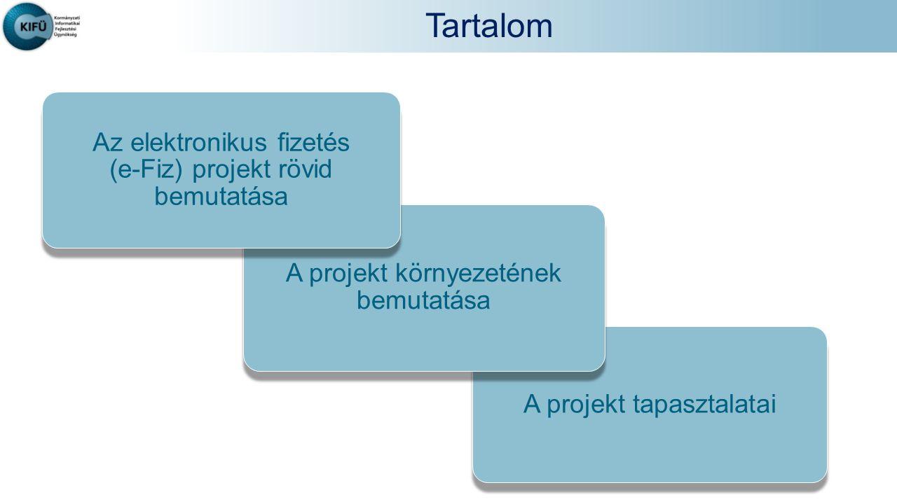 Tartalom A projekt tapasztalatai A projekt környezetének bemutatása Az elektronikus fizetés (e-Fiz) projekt rövid bemutatása