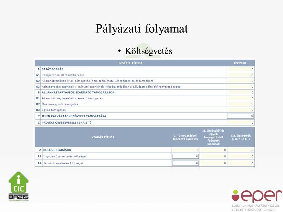 Pályázati folyamat • Költségvetés