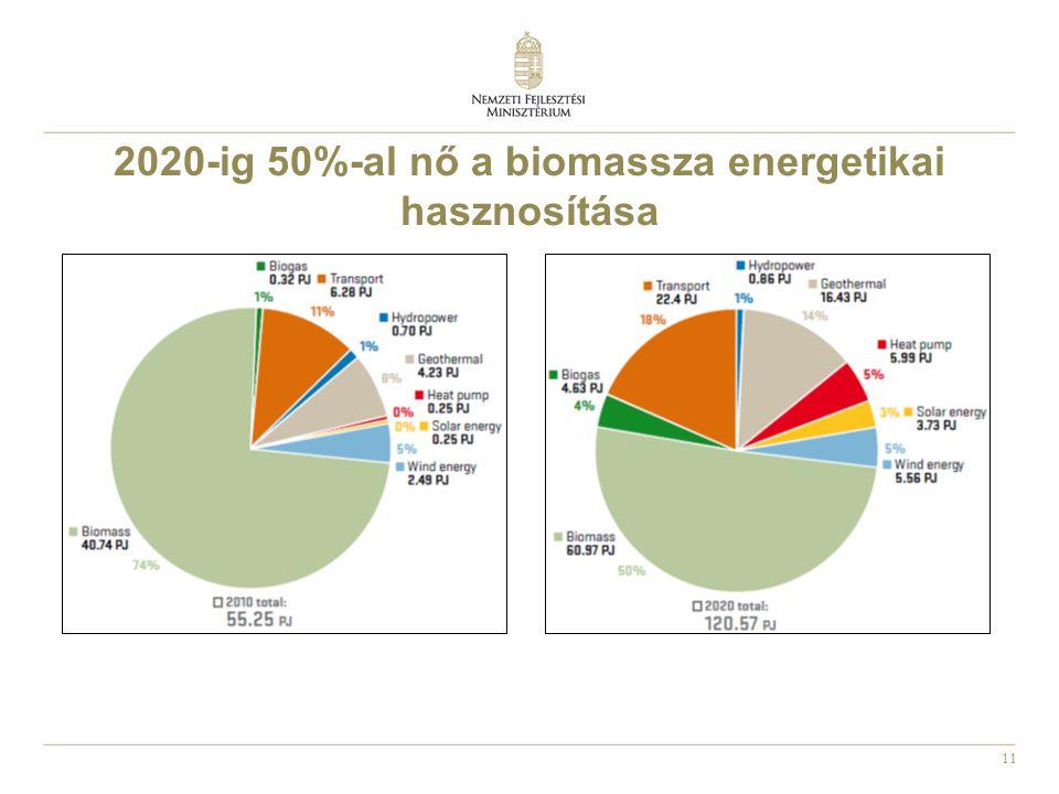 11 2020-ig 50%-al nő a biomassza energetikai hasznosítása
