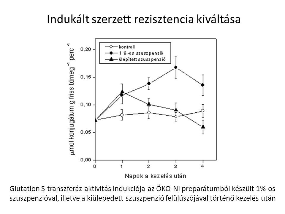 Indukált szerzett rezisztencia kiváltása Glutation S-transzferáz aktivitás indukciója az ÖKO-NI preparátumból készült 1%-os szuszpenzióval, illetve a
