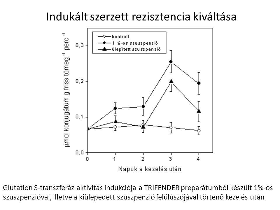 Indukált szerzett rezisztencia kiváltása Glutation S-transzferáz aktivitás indukciója a TRIFENDER preparátumból készült 1%-os szuszpenzióval, illetve
