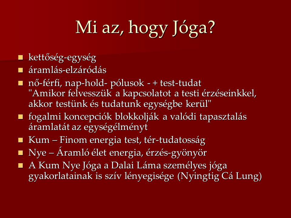 Mi az, hogy Jóga?  kettőség-egység  áramlás-elzáródás  nő-férfi, nap-hold- pólusok - + test-tudat