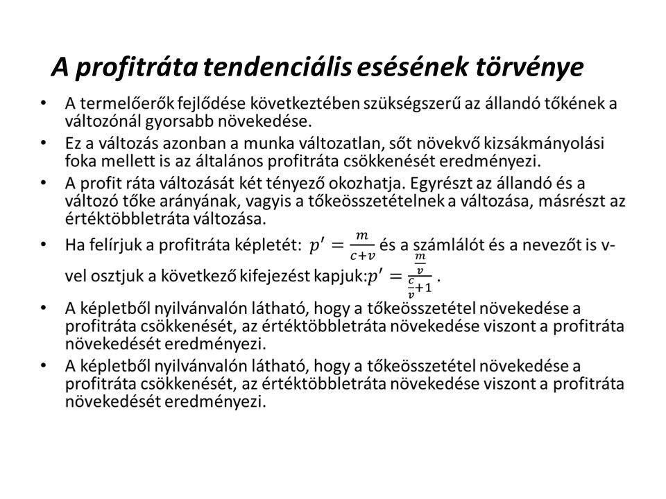 A profitráta tendenciális esésének törvénye •