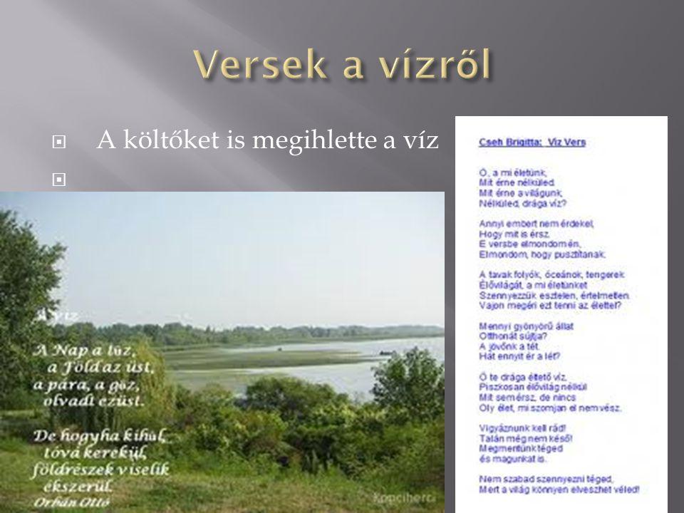 Hazánkban több folyó illetve tó található.