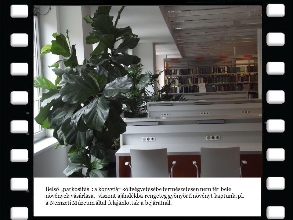 """Belső """"parkosítás"""": a könyvtár költségvetésébe természetesen nem fér bele növények vásárlása, viszont ajándékba rengeteg gyönyörű növényt kaptunk, pl."""