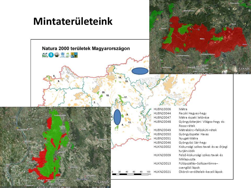 A projekt folyamata Monitoring módszertani fejlesztések Felmérések megkezdése, adatgyűjtés Natura 2000 fenntartási tervek TIR készítése Mintaterületek kezelése Natura 2000 hálózat állapotának teljesebb körű ismerete