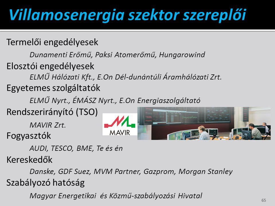 Termelői engedélyesek Dunamenti Erőmű, Paksi Atomerőmű, Hungarowind Elosztói engedélyesek ELMŰ Hálózati Kft., E.On Dél-dunántúli Áramhálózati Zrt. Egy