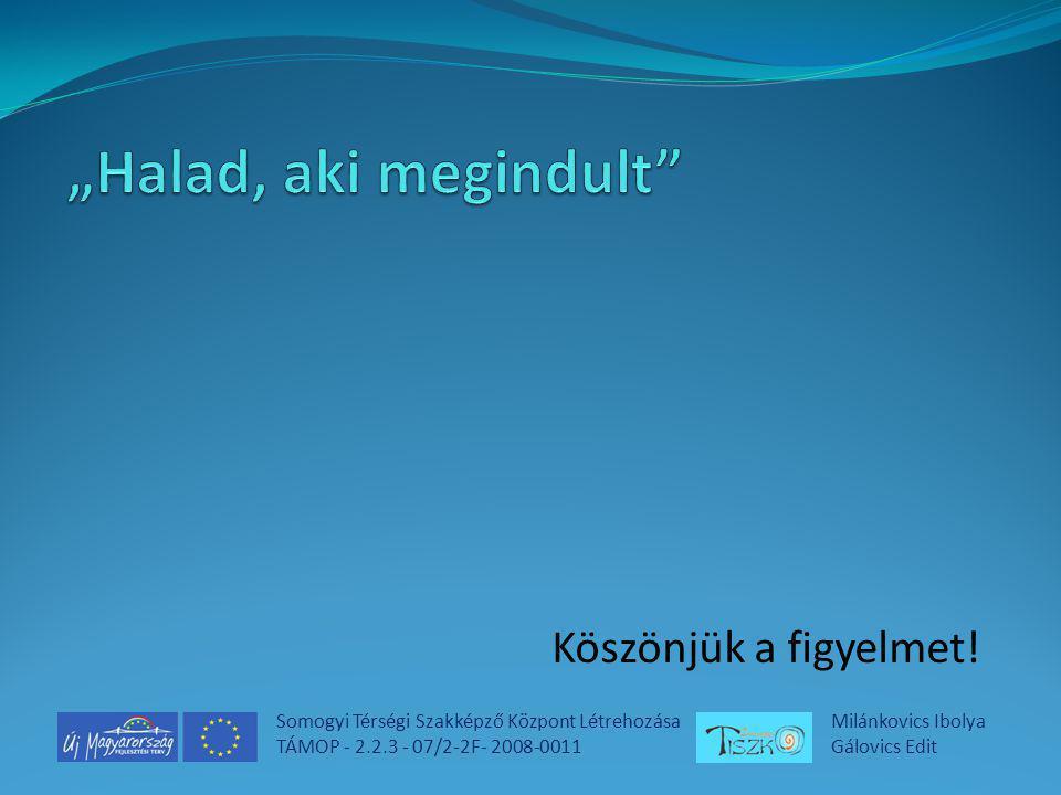 Somogyi Térségi Szakképző Központ Létrehozása TÁMOP - 2.2.3 - 07/2-2F- 2008-0011 Milánkovics Ibolya Gálovics Edit Köszönjük a figyelmet!