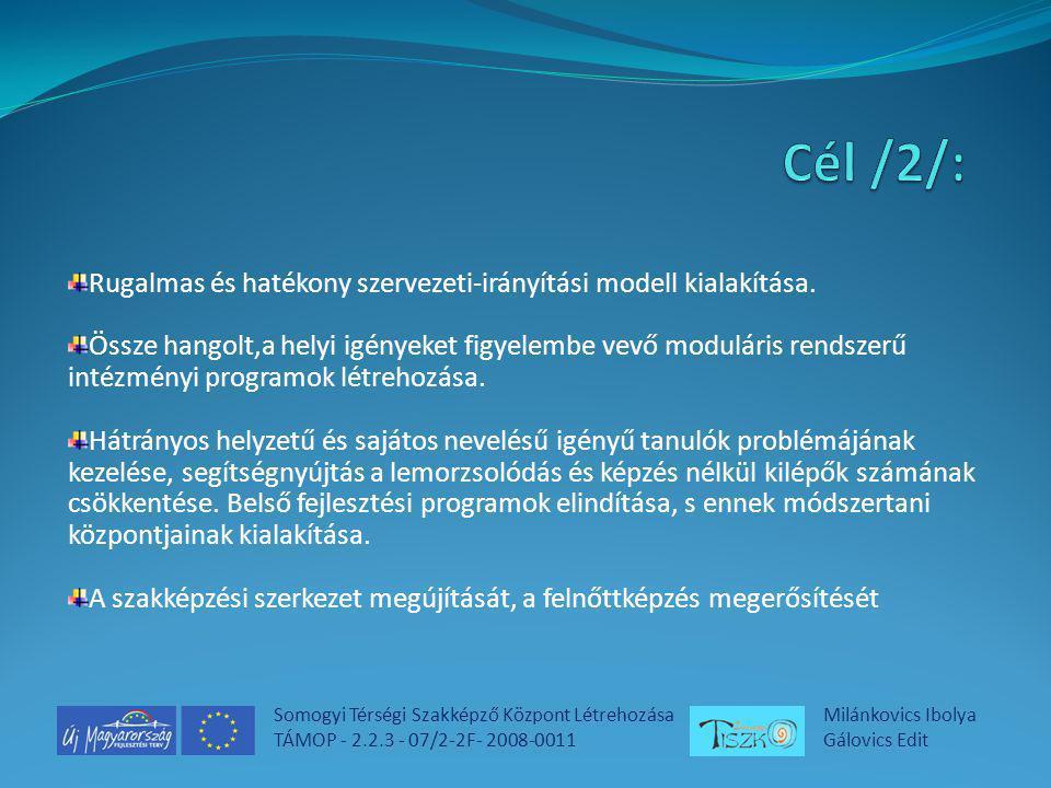 Somogyi Térségi Szakképző Központ Létrehozása TÁMOP - 2.2.3 - 07/2-2F- 2008-0011 Milánkovics Ibolya Gálovics Edit Rugalmas és hatékony szervezeti-irányítási modell kialakítása.