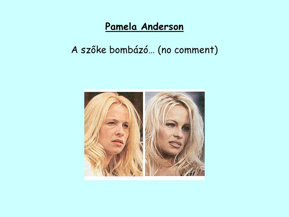 Pamela Anderson A szőke bombázó… (no comment)