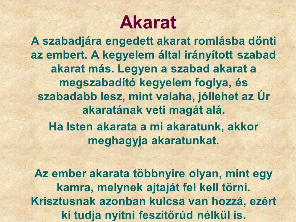 Akarat A szabadjára engedett akarat romlásba dönti az embert. A kegyelem által irányított szabad akarat más. Legyen a szabad akarat a megszabadító keg