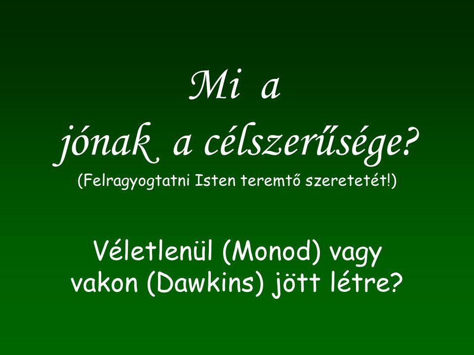 Mi a jónak a célszerűsége? (Felragyogtatni Isten teremtő szeretetét!) Véletlenül (Monod) vagy vakon (Dawkins) jött létre?