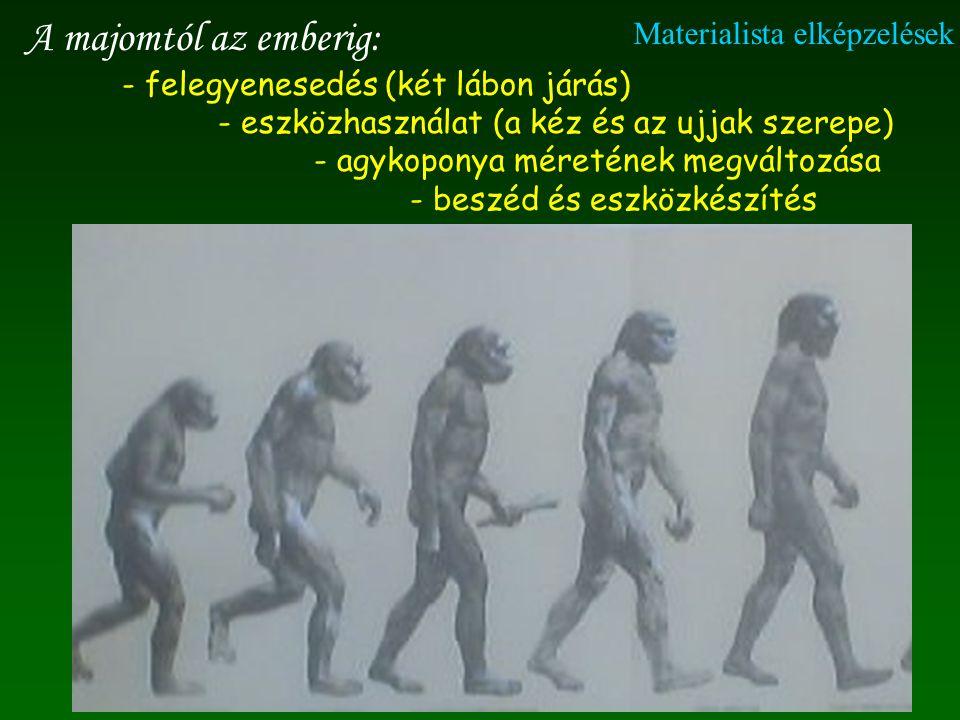 A majomtól az emberig: - felegyenesedés (két lábon járás) - eszközhasználat (a kéz és az ujjak szerepe) - agykoponya méretének megváltozása - beszéd és eszközkészítés Materialista elképzelések