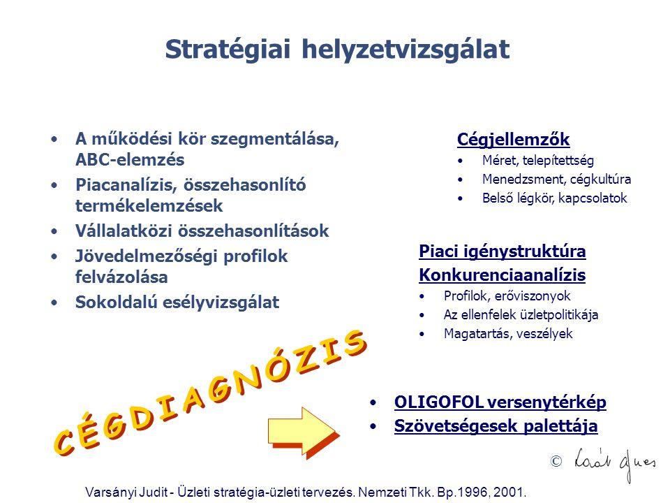 © Stratégiai helyzetvizsgálat •A működési kör szegmentálása, ABC-elemzés •Piacanalízis, összehasonlító termékelemzések •Vállalatközi összehasonlítások