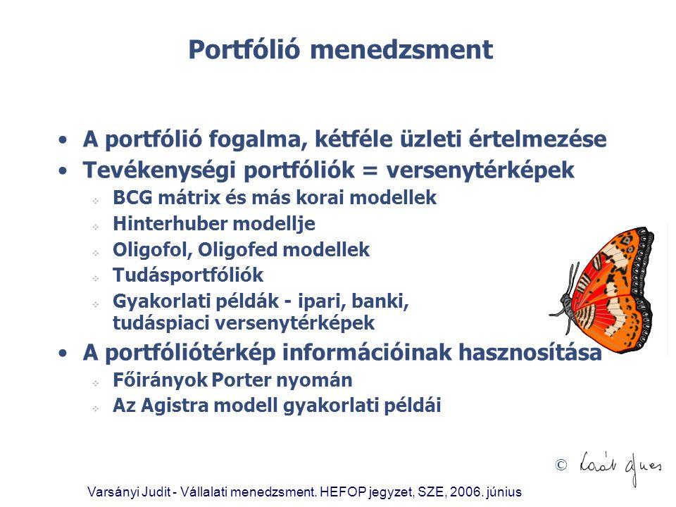 © Portfólió menedzsment •A portfólió fogalma, kétféle üzleti értelmezése •Tevékenységi portfóliók = versenytérképek  BCG mátrix és más korai modellek
