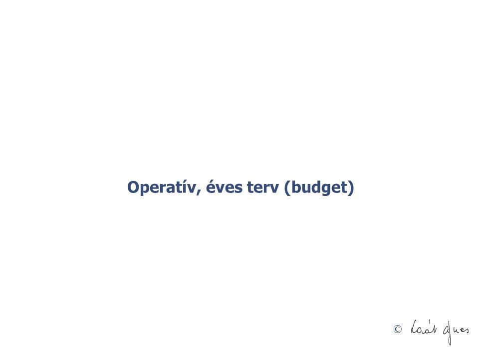 © Operatív, éves terv (budget)