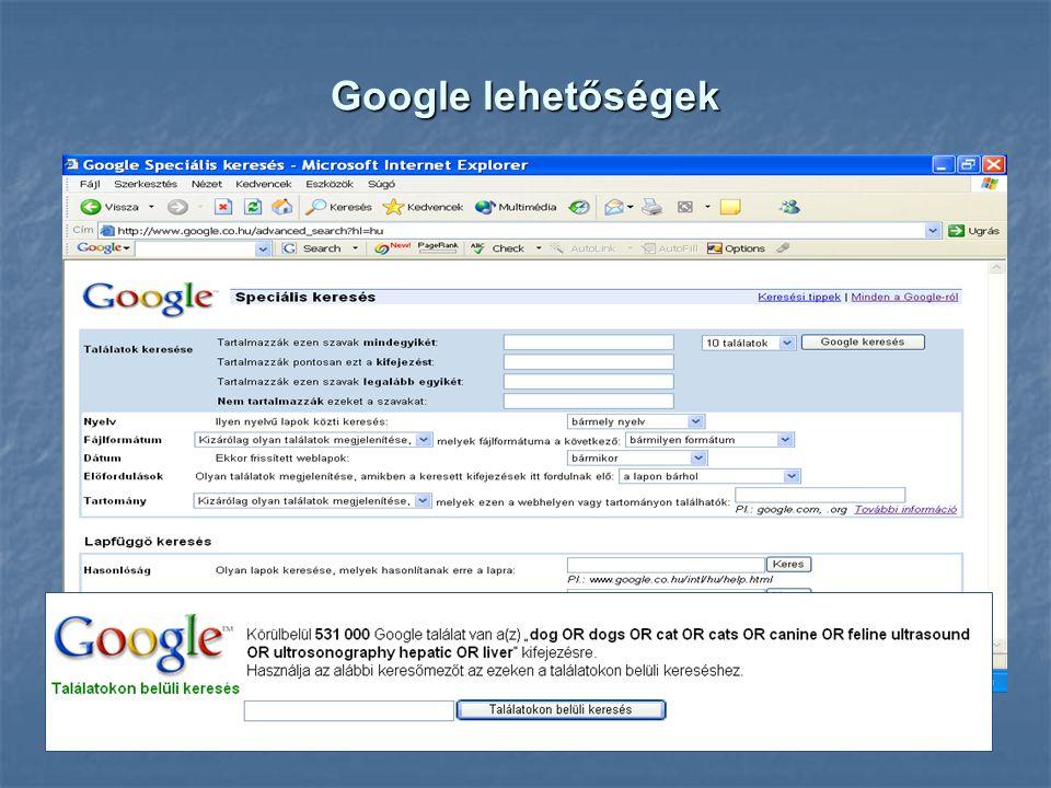 Google lehetőségek