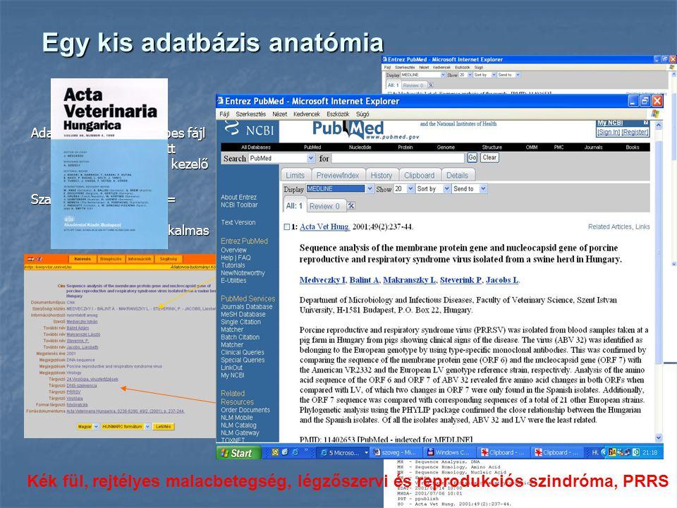 Egy kis adatbázis anatómia Adatbázis = számítógépes fájl előre meghatározott adatszerkezettel és kezelő programmal Szakirodalmi adatbázis = dokumentumok visszakeresésére alkalmas Kék fül, rejtélyes malacbetegség, légzőszervi és reprodukciós szindróma, PRRS