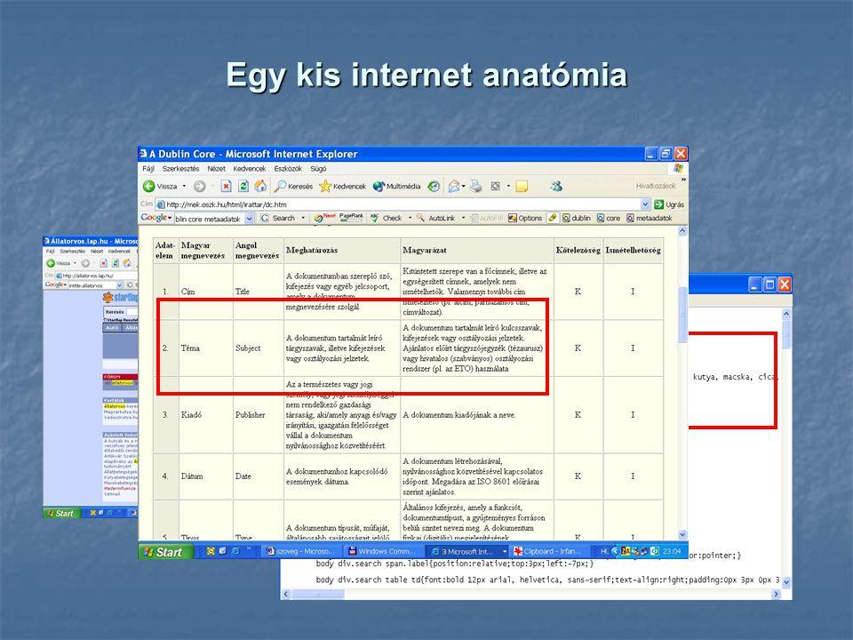 Egy kis internet anatómia