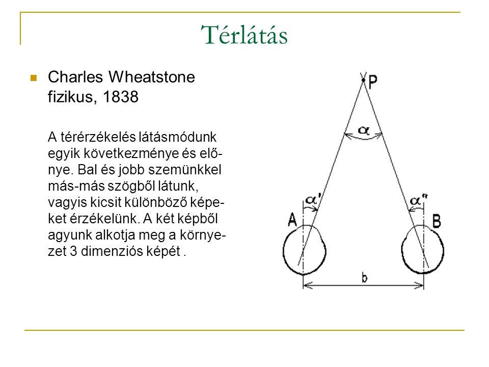 Térlátás  Charles Wheatstone fizikus, 1838 A térérzékelés látásmódunk egyik következménye és elő- nye.
