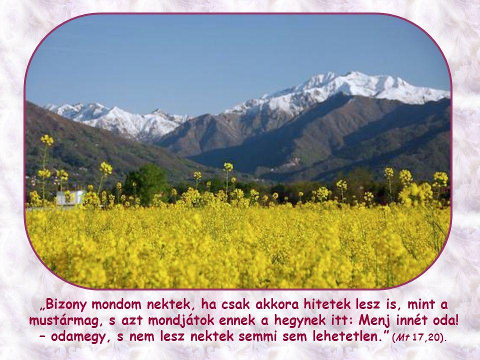 Ez a hit – amely tehát hegyeket mozgat – nem néhány rendkívüli ember kiváltsága, hanem minden hívő számára lehetséges és kötelező.