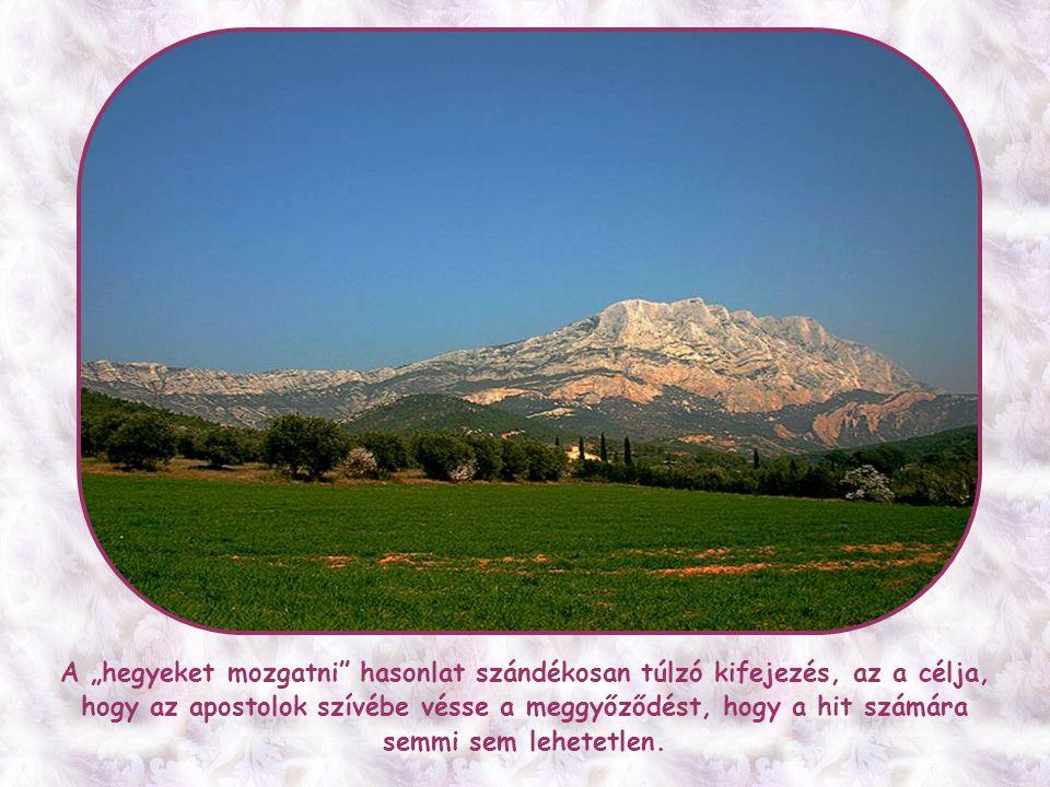Ha végignézel az Egyház történetén, egyetlen szentet sem fogsz találni, ismereteim szerint, aki hegyet mozdított volna a hitével.