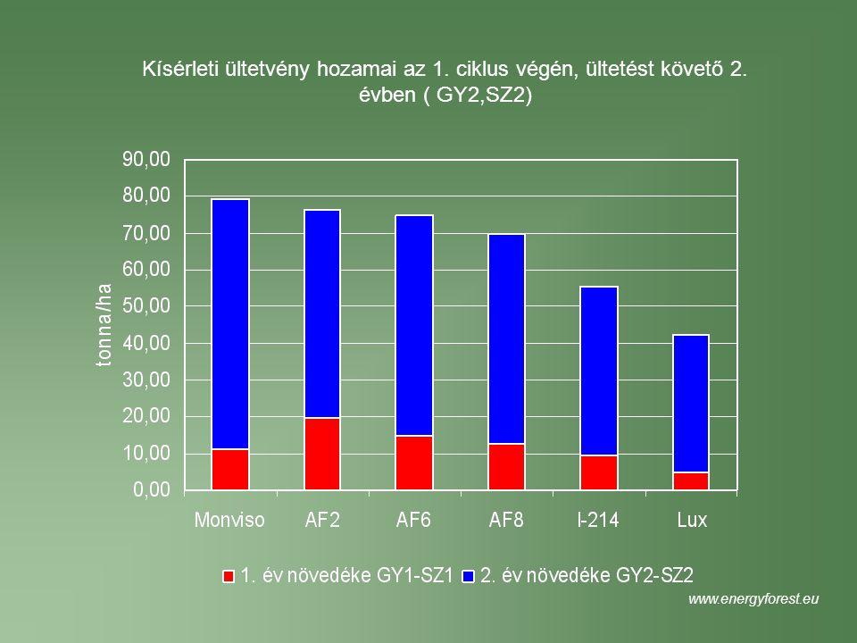 Kísérleti ültetvény hozamai az 1. ciklus végén, ültetést követő 2. évben ( GY2,SZ2) www.energyforest.eu